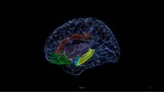 La estimulación eléctrica del cerebro mejora el estado de ánimo